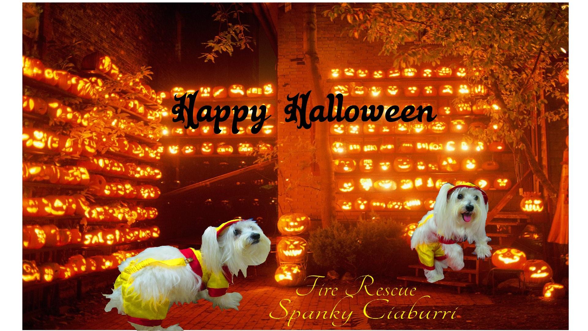 Spanky Halloween Contest 2014