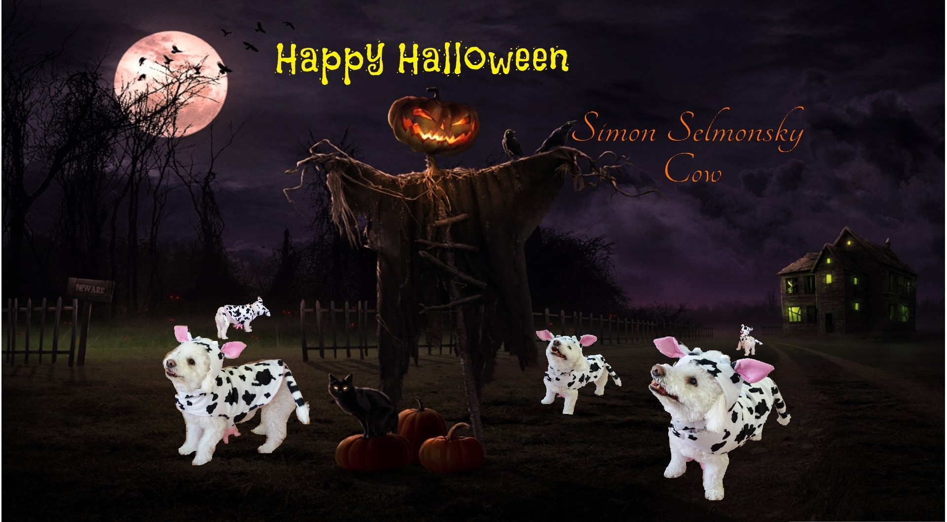 Simon Selmonsky Halloween Contest 2014